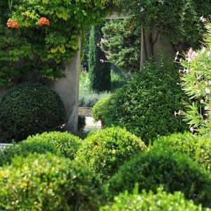 Jardin service du sud entretien de votre jardin