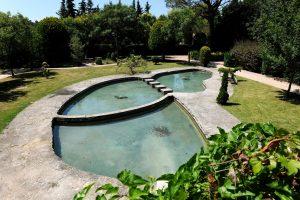 Vidange de bassin exterieur